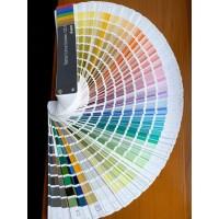 Широка палітра кольорів для підлоги